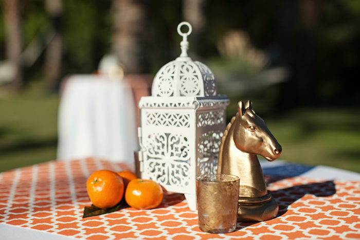 Amberly+Scott-Parker-Palm-Springs-Tangerine-Horse-Decor
