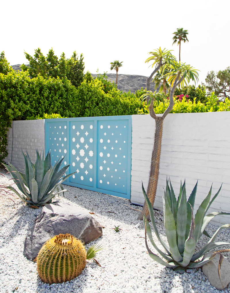 web-Jeff-Mindell-for-Palm-Springs-Style---Indian-Canyons-Home-29